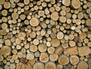 Troncos Madera Natural Wood trunk juntos btc bch ltc dash Sostenibilidad